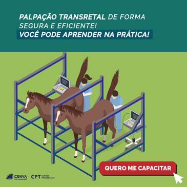 Curso de Palpação Transretal em Equinos