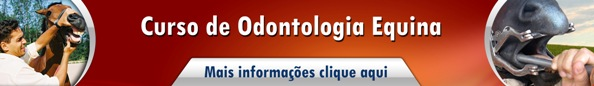 Odontologia Equinos2