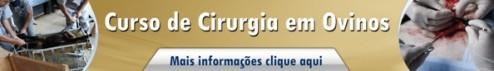 CIRURGIA EM OVINOS2
