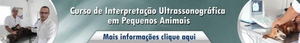 Interpretação Ultrassonográfica em Pequenos Animais