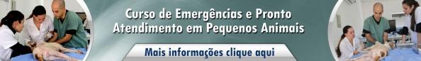 emergencias e protoatendimento em caes e gatos