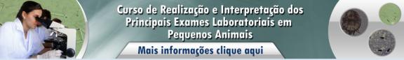 Realizaçao e interpretação exames  dos principais exames laboratorias em pequenos animais