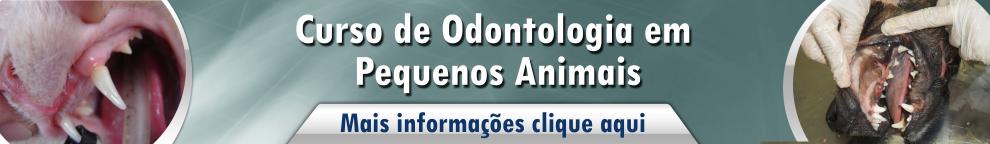 odontologia em pequenos animais