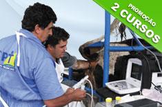 cursos-de-ultrassonografia-e-aspiracao-folicular-para-fiv-em-bovinos