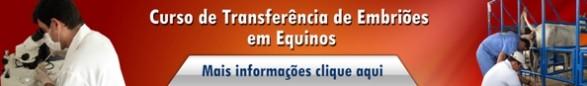 TE Equinos 2