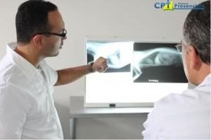 A importância da capacitação profissional - radiografia em pequenos animais