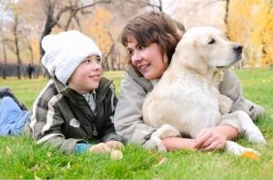 Os cães utilizam a postura e olhares para comunicação