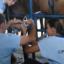 Transferência de Embriões em equinos: conheça as principais vantagens!