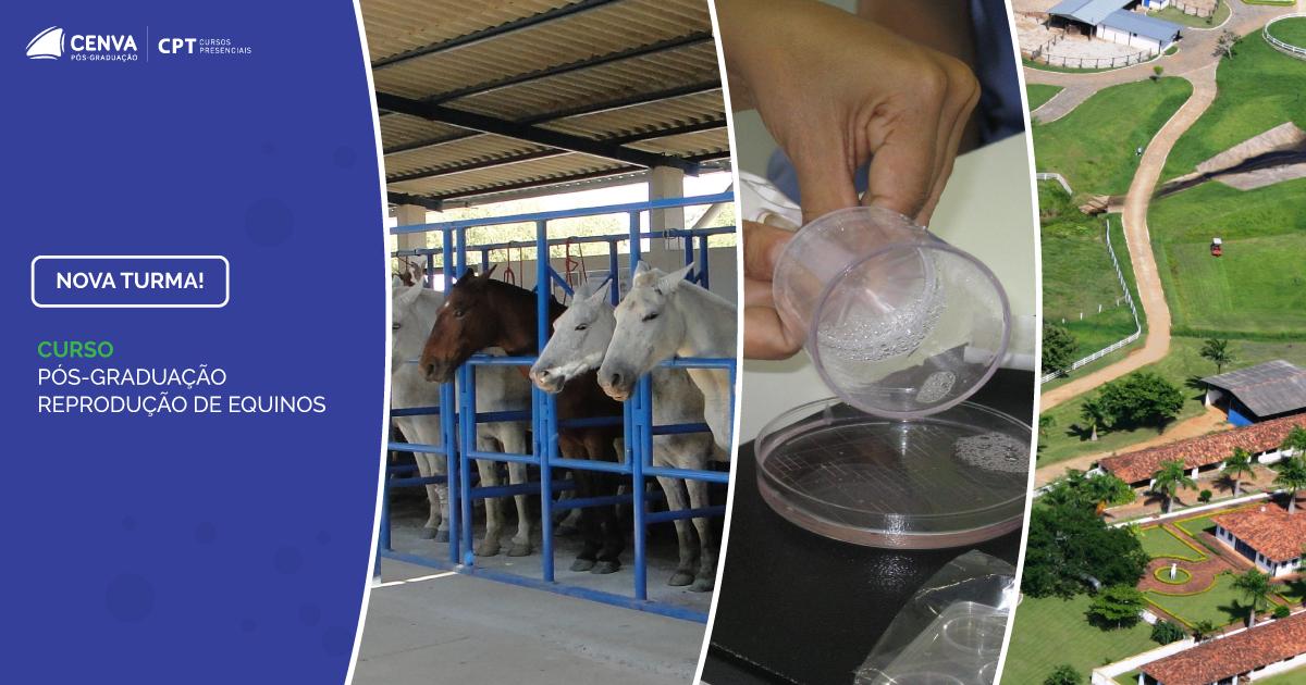 CENVA Pós Graduação em Reprodução em Equinos