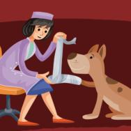 Ortopedia em pequenos animais