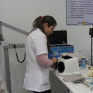 Odontologia veterinária