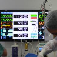 Quais as vantagens da Anestesia Inalatória Veterinária