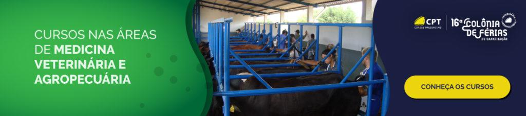 Cursos na área de medicina veterinária e agropecuária