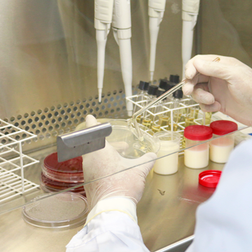 Exames-Laboratoriais-Veterinários-conheça-a-importância