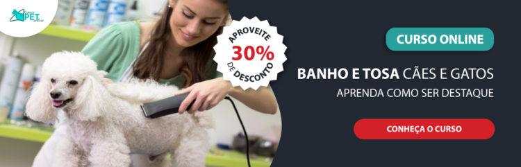 Curso Online Banho e Tosa em Cães e Gatos – Infraestrutura, Banhos e Tosa Higiênica