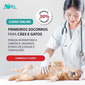 Curso Online Primeiros Socorros para Cães e Gatos – Parada Respiratória e Cardíaca, Desmaios, Estado de Choque e Convulsões