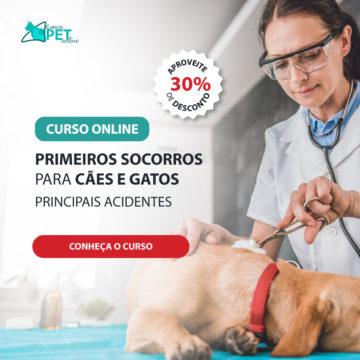 Curso Online Primeiros Socorros para Cães e Gatos – Principais Acidentes