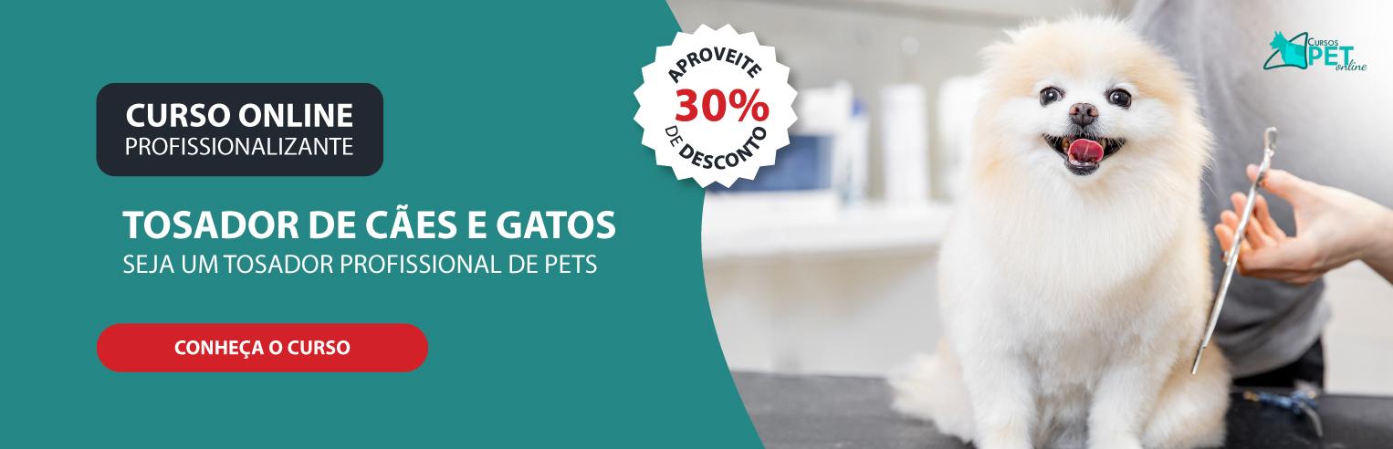 Curso Profissionalizante Online de Tosador de Cães e Gatos