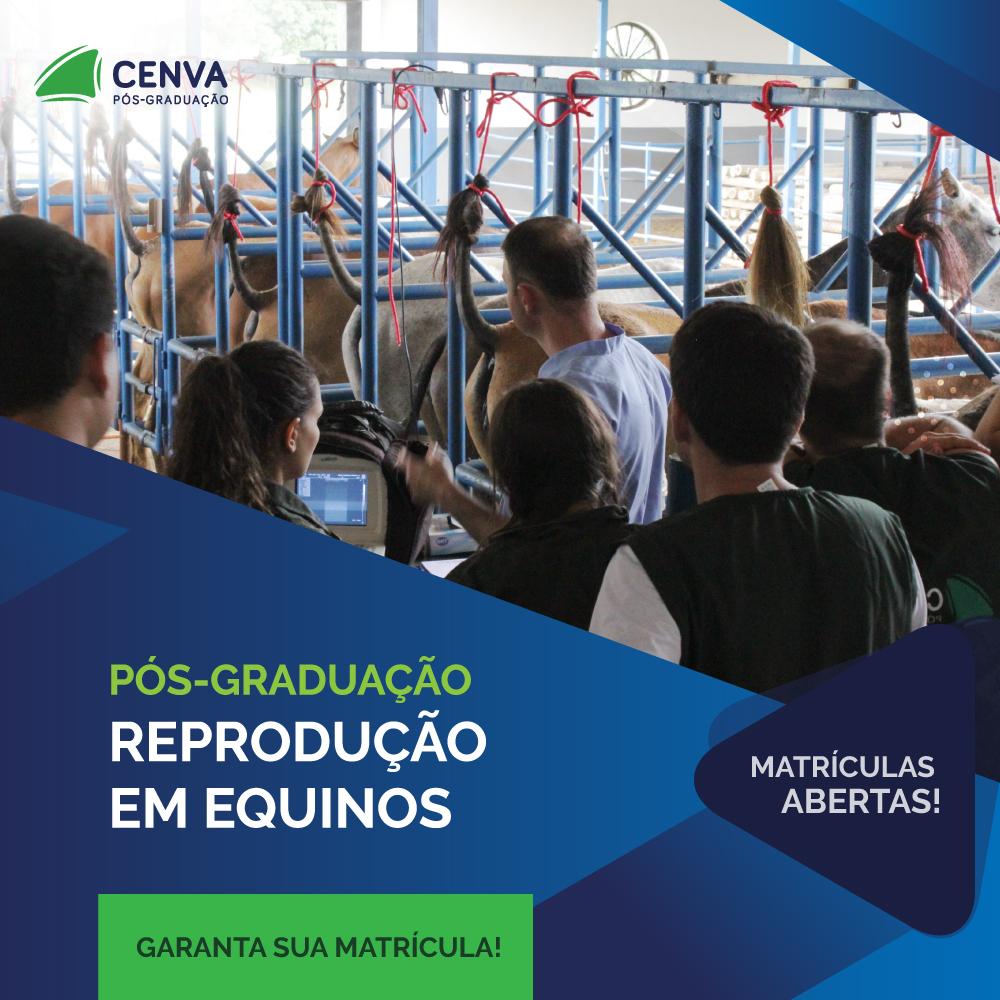 CENVA Pós-Graduação em Reprodução Equina