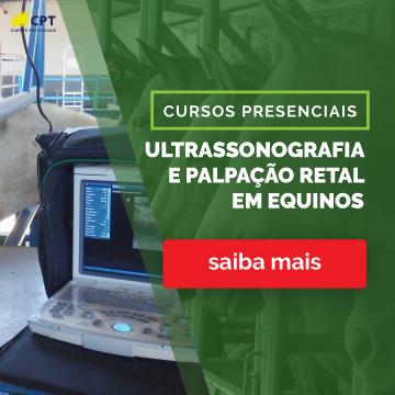 Ultrassonografia e Palpação Retal em Equinos