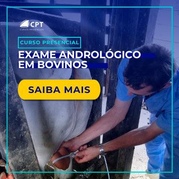 Exame andrológico bovino
