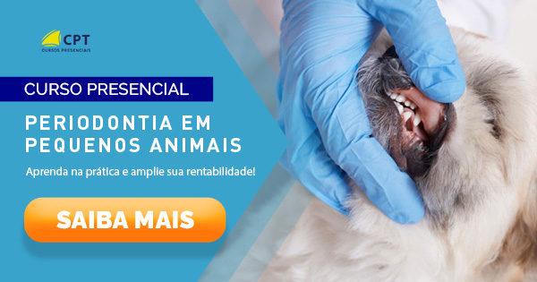 Periodontia em Pequenos animais