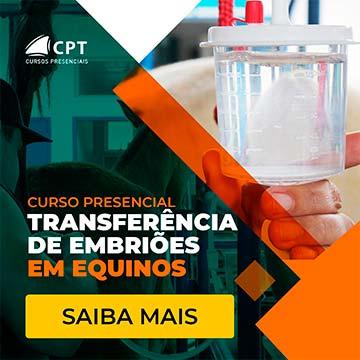 transferência de embriões em equinos