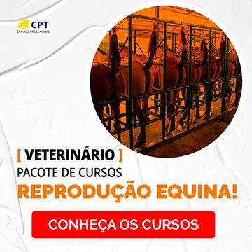 Reprodução Equina