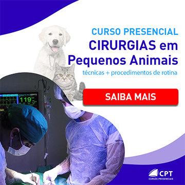 cirurgias em pequenos animais